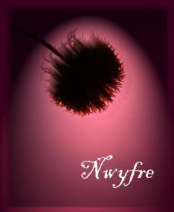 Nwyfre