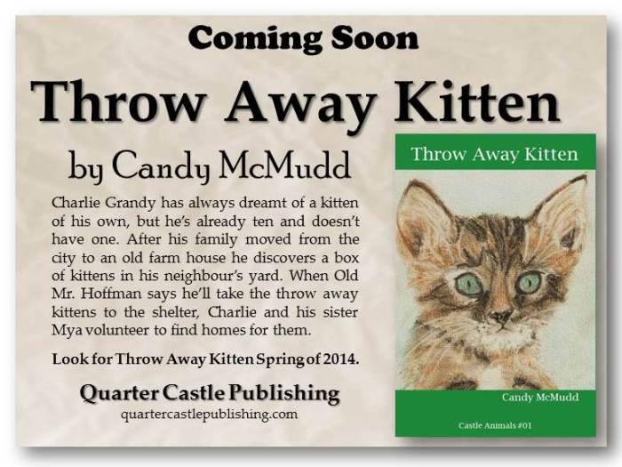 Book Blurbs Upcoming Book